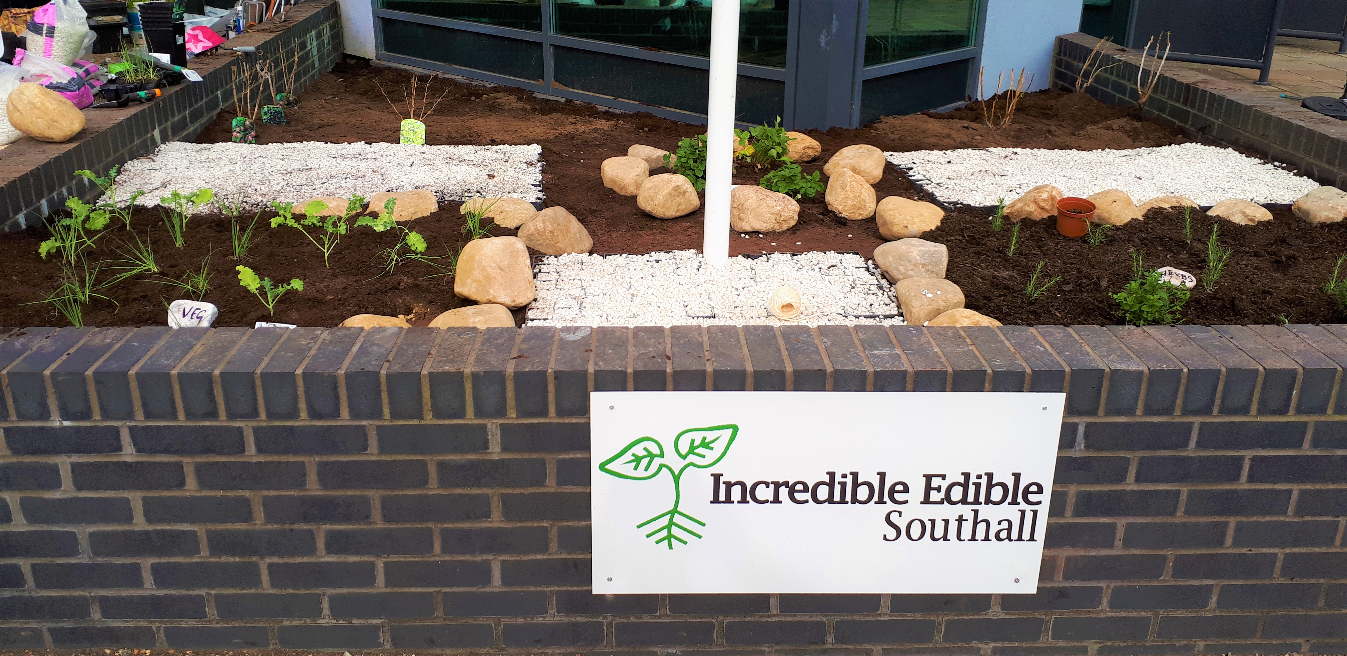 The first Incredible Edible garden in Ealing comes to Southall Community College