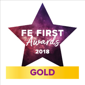 FEAwards logo 2018 GOLD